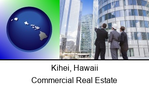 Kihei, Hawaii - commercial and industrial real estate