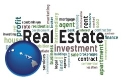 Hawaii - real estate concept words