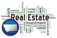 Montana - real estate concept words