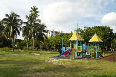 playground equipment and palm trees in a park setting